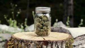Find everything before you buy marijuana